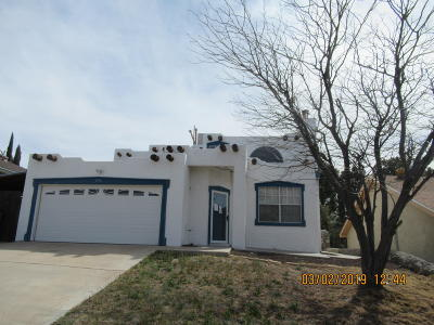El Paso Single Family Home For Sale: 216 Arisano Drive
