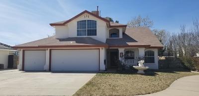 Horizon City Single Family Home For Sale: 485 Desierto Vista Court
