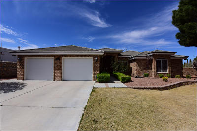Single Family Home For Sale: 1275 Trail Ridge Drive