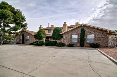 El Paso Multi Family Home For Sale: 2008 Amy Sue Drive #A-D
