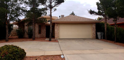 El Paso Single Family Home For Sale: 11967 Banner Run Drive