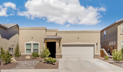 El Paso Single Family Home For Sale: 7333 Meadow Sage
