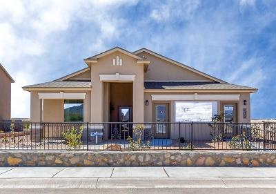 El Paso Single Family Home For Sale: 6405 Villaggio Drive