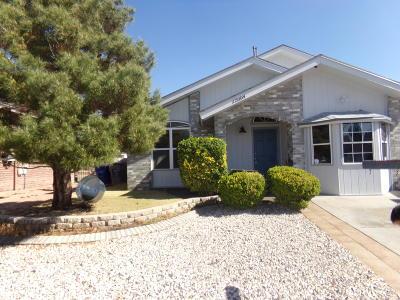 El Paso Single Family Home For Sale: 12004 Castle Woods Drive