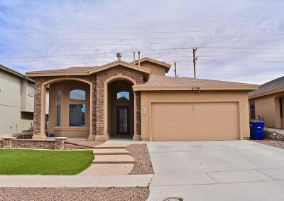 El Paso Single Family Home For Sale: 6500 Geyser