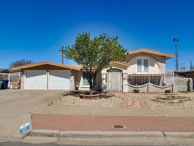 El Paso Single Family Home For Sale: 9305 Cosmos Avenue