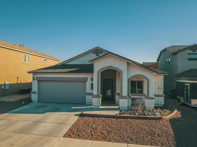 El Paso Single Family Home For Sale: 14848 Bert Cameron Avenue