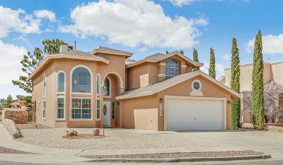 El Paso Single Family Home For Sale: 3089 Tierra Humeda Drive