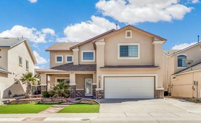 El Paso Single Family Home For Sale: 12800 Tierra Alexis Drive