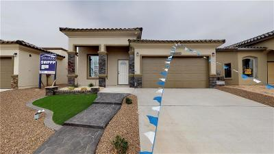 Single Family Home For Sale: 13633 Garforth Avenue
