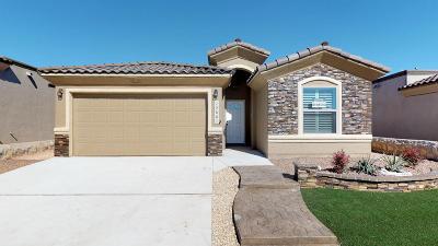 Single Family Home For Sale: 13624 Garforth Avenue