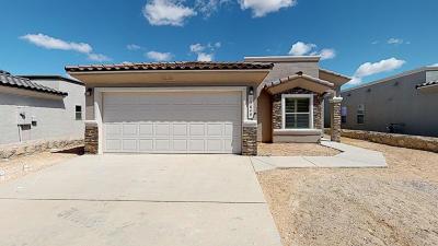 Single Family Home For Sale: 13684 Garforth Avenue