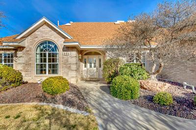 El Paso Single Family Home For Sale: 1984 Paseo Segovia Place