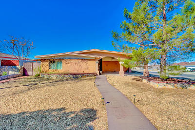 El Paso Single Family Home For Sale: 296 Three Rivers Drive
