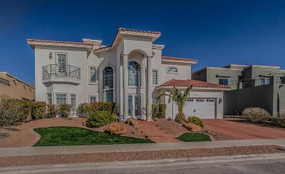 El Paso Single Family Home For Sale: 6360 Franklin Crest Drive