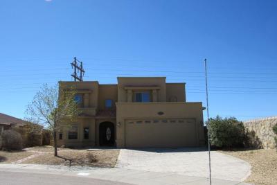 El Paso Single Family Home For Sale: 3809 Tierra Isela Drive