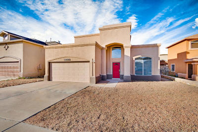 Single Family Home For Sale: 12221 Iverson Court