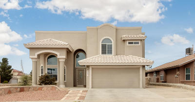 El Paso Single Family Home For Sale: 3641 Rachel Crystel