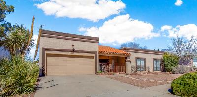 El Paso Single Family Home For Sale: 6629 El Parque Drive