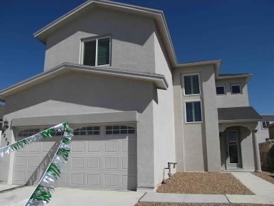 El Paso Single Family Home For Sale: 12234 Joaquin Roman Lane