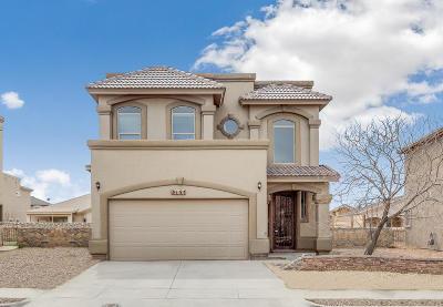 El Paso Single Family Home For Sale: 3131 Hidden Creek Drive