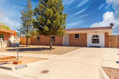 El Paso Single Family Home For Sale: 8553 Danube Circle