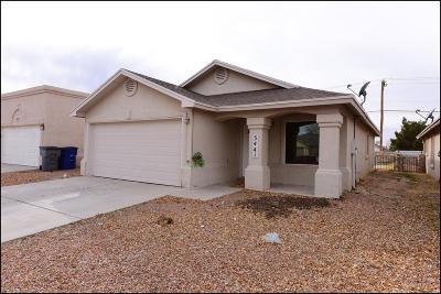 El Paso Single Family Home For Sale: 3441 Mike Godwin Drive