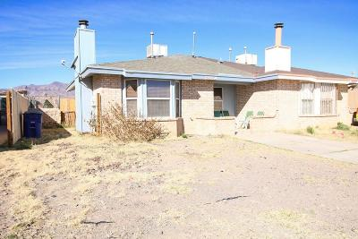 El Paso Single Family Home For Sale: 10025 Caribou #B