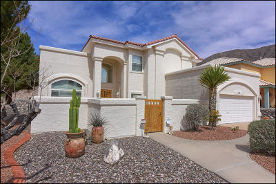 El Paso Single Family Home For Sale: 529 Moondale Drive