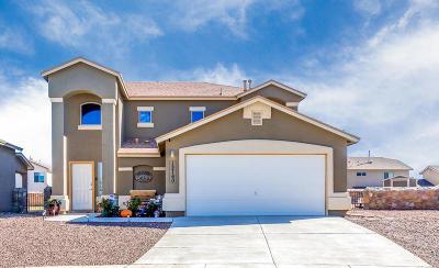 El Paso Single Family Home For Sale: 12160 Buckshot Place