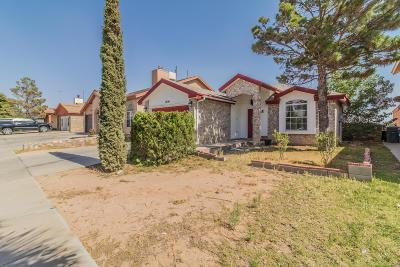 El Paso Single Family Home For Sale: 12156 Royal Woods Drive