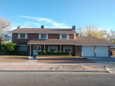 El Paso Single Family Home For Sale: 8816 Basil Court