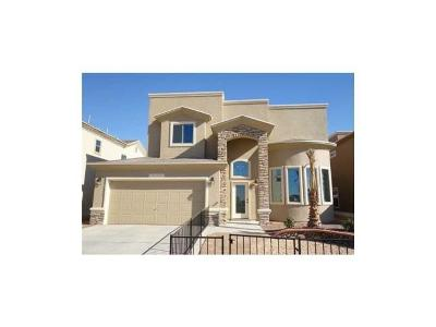 El Paso Single Family Home For Sale: 2151 Enchanted Brook Drive