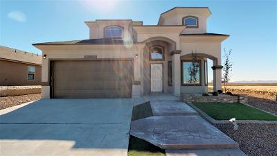 Horizon City Single Family Home For Sale: 13941 Flora Vista Avenue