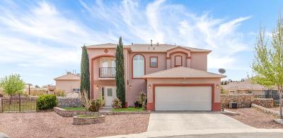 Single Family Home For Sale: 5900 Anapaula Drive
