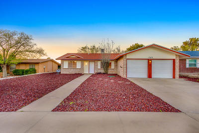 El Paso Single Family Home For Sale: 7213 Ramada Drive
