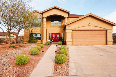 El Paso Single Family Home For Sale: 3220 Ivy Point Way
