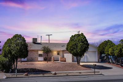 El Paso Single Family Home For Sale: 345 Belvidere Street