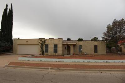 Horizon City Single Family Home For Sale: 3632 Colville Drive