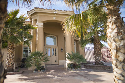 Canutillo Single Family Home For Sale: 600 Phil Hansen Drive