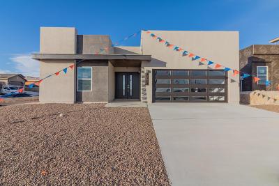 Horizon City Single Family Home For Sale: 12651 Mark Twain Avenue