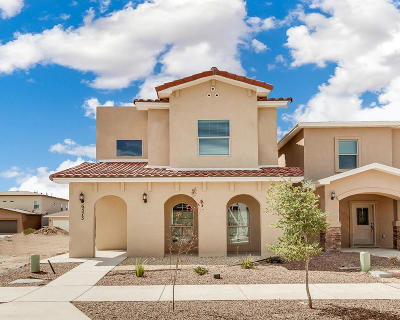 El Paso Single Family Home For Sale: 6573 Hoop Street