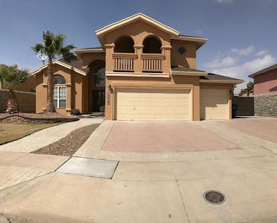 Vista Del Sol Single Family Home For Sale: 12253 Diana Natalicio Drive