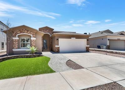 El Paso Single Family Home For Sale: 12421 Furlong Circle