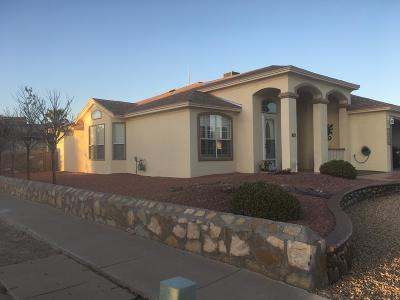 El Paso Single Family Home For Sale: 12301 Peggy Rosson Way