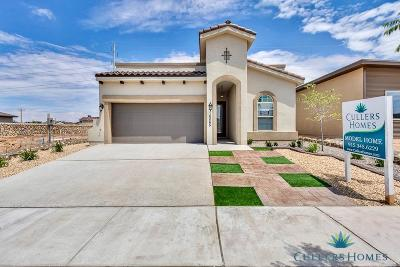 El Paso Single Family Home For Sale: 7458 Wooden Nickel Drive