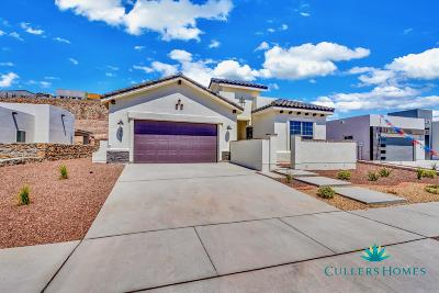 El Paso Single Family Home For Sale: 1754 Sidesaddle Drive