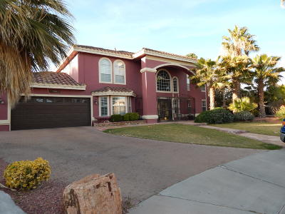 El Paso Single Family Home For Sale: 1963 Paseo Del Sol Place