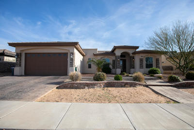 El Paso Single Family Home For Sale: 14164 Coyote Drift Court