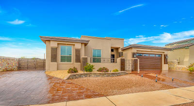 El Paso Single Family Home For Sale: 12311 Wills Crescent Court